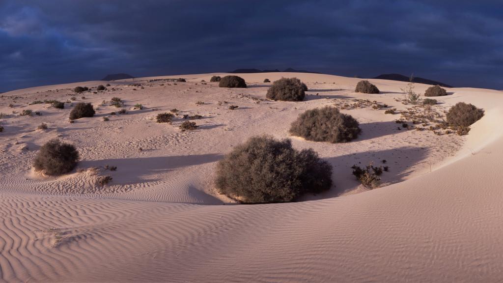 1-Sp_Canarias_Fuerteventura_Corralejo006_11uF8bkopie