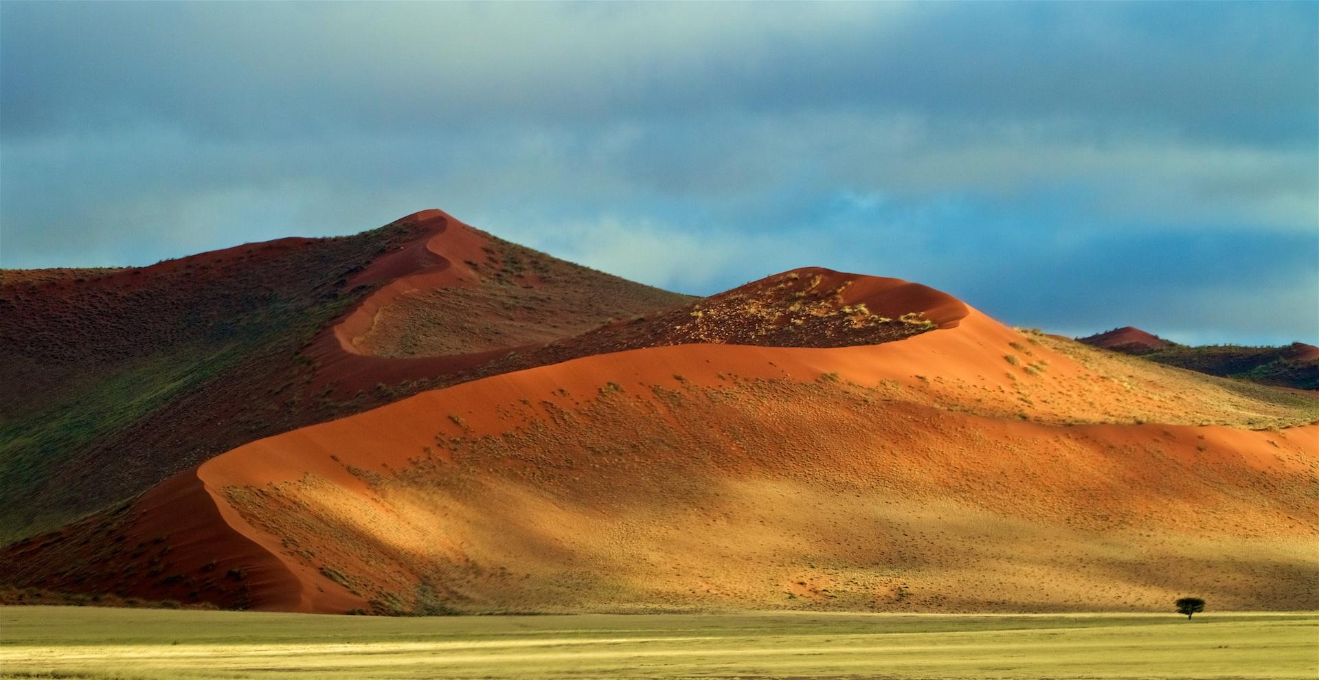 Zelená poušť